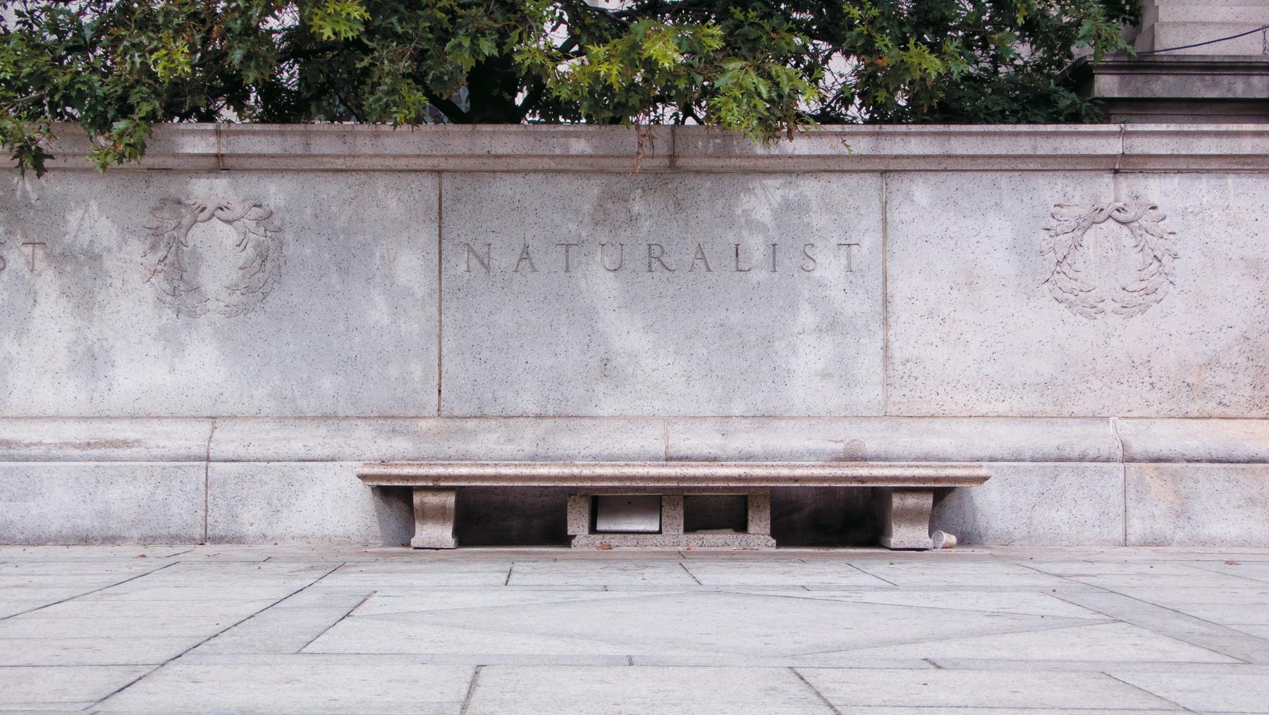 Naturalisme-2009